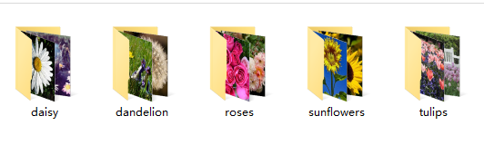 TensorFlow应用:识别花的种类