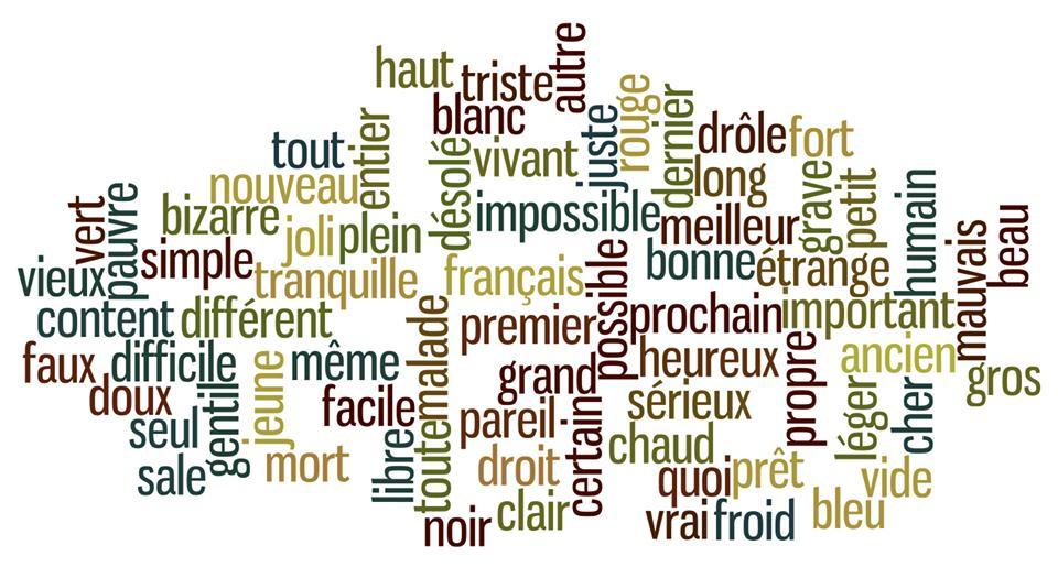 法语哪些形容词可以放在名词前面?